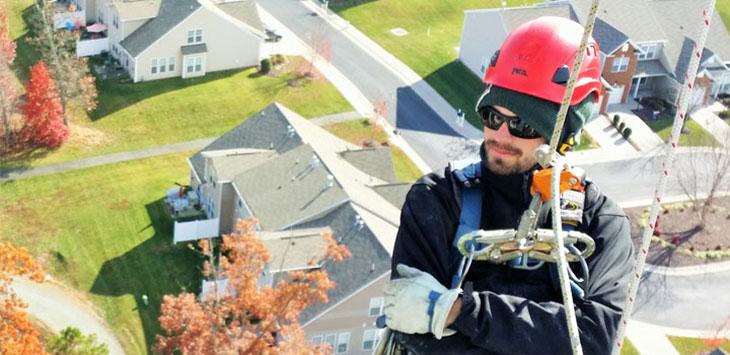 tower climber jobs