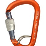 Rock Exotica Pirate Locking Carabiner - WireEye Screw-Lock