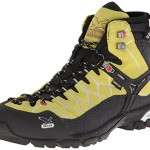 Salewa Men's Alp Trainer Mid GTX Hiking Boot,Sulphur,9.5 M US