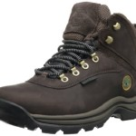 Timberland White Ledge Waterproof Boot,Brown,12 M