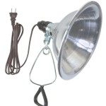 Woods 0151 18/2-Gauge SPT-2 Clamp Lamp with 8.5-Inch Reflector, 150-Watt, 6-Foot Cord